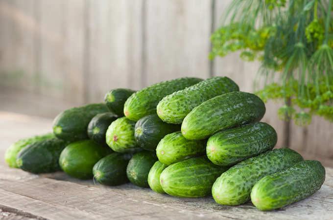 Cucumber_mini