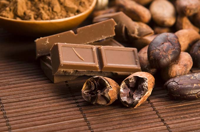 bigstock-Cocoa-cacao-Beans-With-Choco-44926294