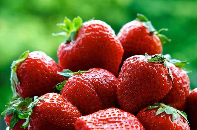 bigstock-Fresh-strawberries-on-summer-w-48293483