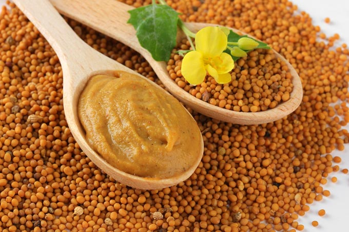 bigstock-Mustard-seeds-with-mustard-flo-48443117_mini