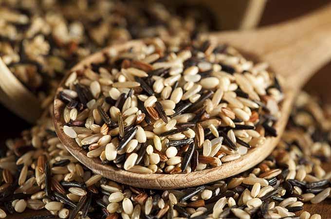 bigstock-Organic-Dry-Multi-Grain-Rice-45009448