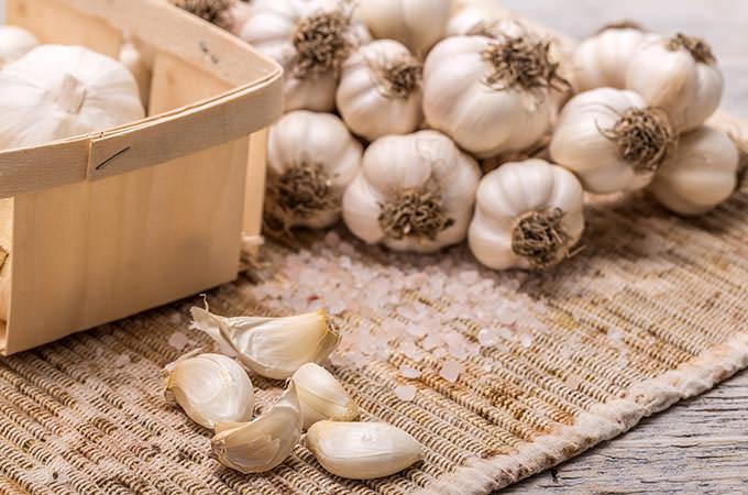 bigstock-Garlic-79799545